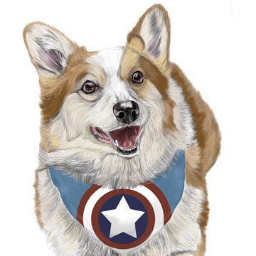 Animal Art: Captain Corgi